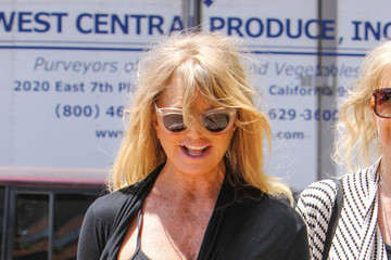 Goldie Hawn Goldie Hawn Goes Out With a Friend