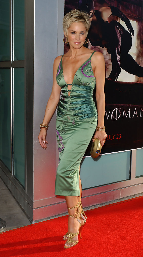 Sharon Stone Photos Premiere Of Quot Catwoman Quot 9025 Of