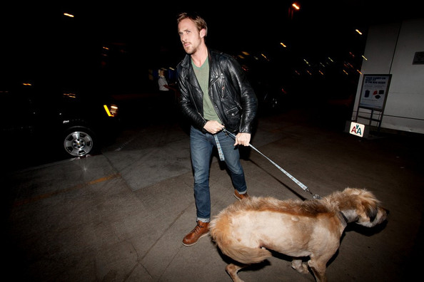 Ryan Gosling Ryan Gosling prepares to depart LAX (Los Angeles International Airport) with his dog.