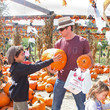 Hold On - Celebrities and Their Kids At the Pumpkin Patch