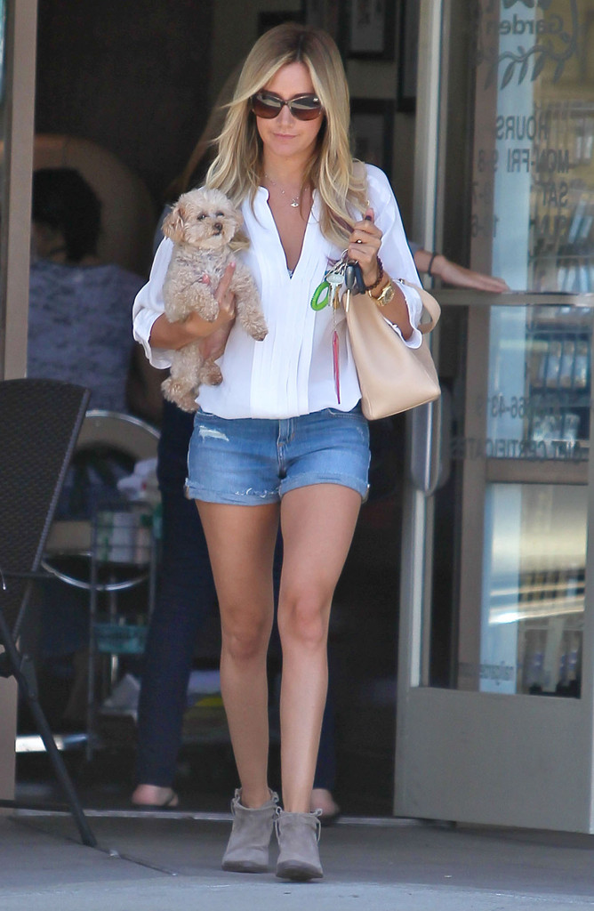 'Jonah & The Whale' actress Ashley Tisdale and her dog leaving a nail salon after getting her nails done in Los Angeles, California on June 12, 2012.