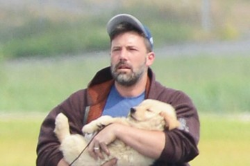 Everyone is Going Crazy Over These Photos of Ben Affleck Cradling a Yellow Lab Puppy