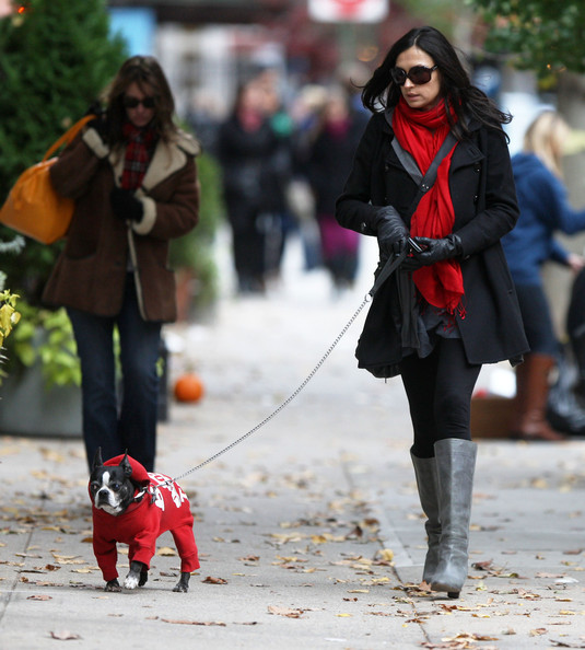 1000 Images About Walking The Dogs On Pinterest