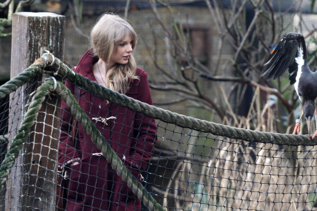 Taylor Swift Photos Photos - Taylor Swift Visits the Zoo 5