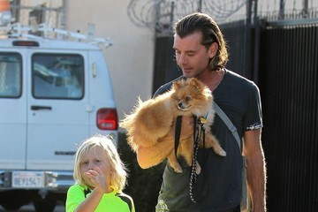 Zuma Rossdale Gavin Rossdale Takes Son Zuma To Visit Gwen At A Studio