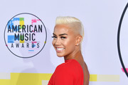 Sibley Scoles attends the 2017 American Music Awards at Microsoft Theater on November 19, 2017 in Los Angeles, California.