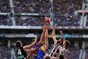 (L-R) Brodie Grundy of the Magpies, Josh Kennedy of the Eagles, Tyson Goldsack of the Magpies and Mason Cox of the Magpies compete for the ball during the 2018 Toyota AFL Grand Final match between the West Coast Eagles and the Collingwood Magpies at the Melbourne Cricket Ground on September 29, 2018 in Melbourne, Australia.