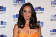 Actress Melissa Fumero attends the 22nd Annual National Hispanic Media Coalition Impact Awards Gala at Regent Beverly Wilshire Hotel on February 22, 2019 in Beverly Hills, California.
