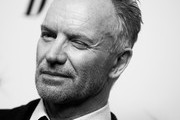 Sting Photos Photo