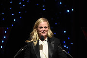 Amy Poehler poses onstage at the 72nd Writers Guild Awards at Edison Ballroom on February 01, 2020 in New York City.