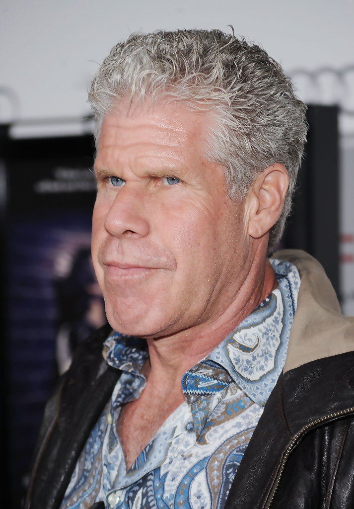 """Ron Perlman in AFI FEST 2010 Presented By Audi - """"Blue ..."""
