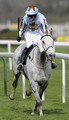 Silver Adonis and Mr Tom Weston punch the air as they take victory in The John Smith's Fox Hunters' Steeple Chase  at Aintree racecourse on April 08, 2010 in Liverpool, England