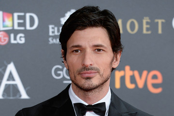 Andres Velencoso Goya Cinema Awards 2017 - Red Carpet