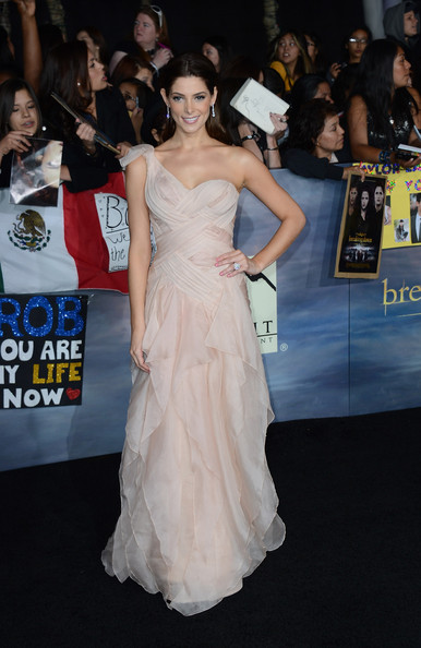 The Red Carpet at the 'Breaking Dawn' Premiere