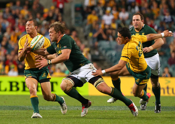 australia vs south africa rugby