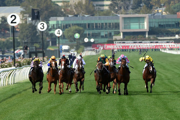 Ball Of Muscle Melbourne Racing
