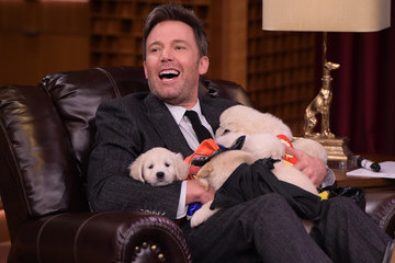 These Pictures of Ben Affleck Being Smothered by Superhero Puppies Will Make Your Friday