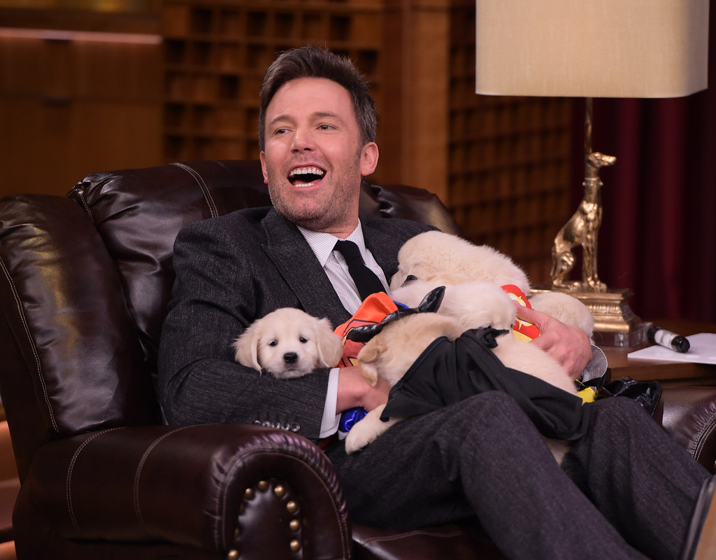 Please Enjoy These Pictures of Ben Affleck Being Smothered by 'Superman' Puppies