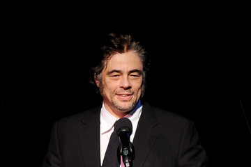 Benicio Del Toro The Annual Make-Up Artists And Hair Stylists Guild Awards - Show