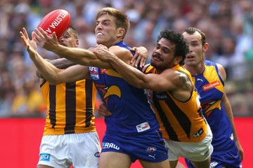 Bradley Hil 2015 AFL Grand Final - Hawthorn v West Coast