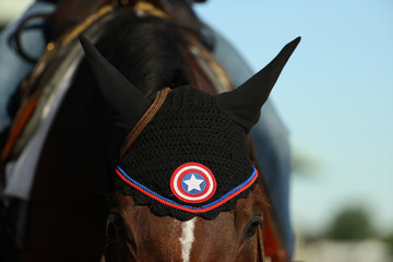 Captain America 149th Belmont Stakes - Previews