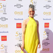 Carla Hall 50th NAACP Image Awards - Red Carpet