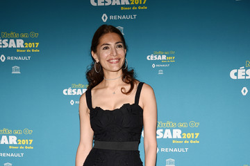 Caterina Murino 'Les Nuits en Or 2017' Dinner Gala - Photocall At Unesco