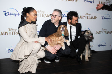 "Charlie Bean Disney+'s ""Lady And The Tramp"" New York Screening"