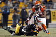 Gio Bernard Photos Photo