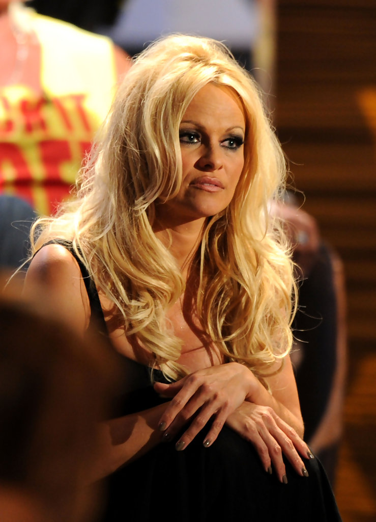 Roast of Pamela Anderson - Review - Comedy Central ...