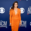 Danica Patrick 54th Academy Of Country Music Awards - Arrivals