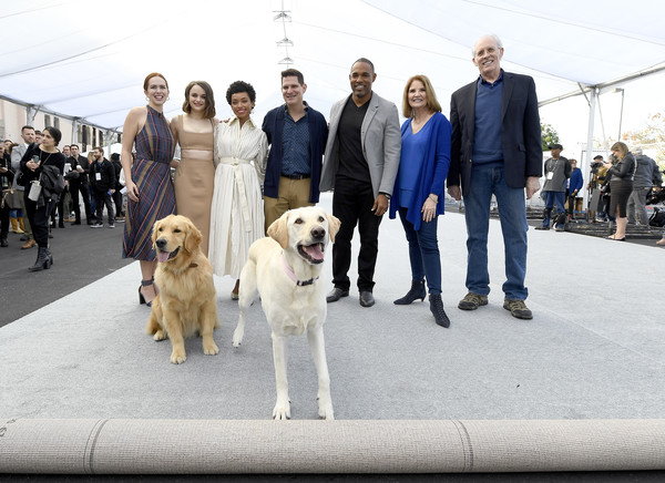 26th Annual Screen Actors Guild Awards - Silver Carpet Roll Out Event [vertebrate,dog,mammal,canidae,dog breed,golden retriever,retriever,labrador retriever,sporting group,kennel club,carpet,joey king,elizabeth mclaughlin,jason george,todd milliner,logan browning,daryl anderson,screen actors guild awards,sag awards committee,event,daryl anderson,joey king,daryl sabara,kathy connell,screen actors guild awards,sag-aftra,actor,photography,dog breed]