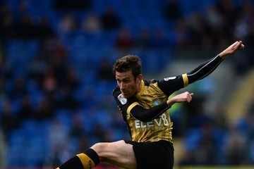 David Jones Cardiff City v Sheffield Wednesday - Sky Bet Championship