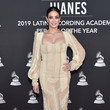 Dayanara Torres The 20th Annual Latin GRAMMY Awards- Person Of The Year Gala – Arrivals