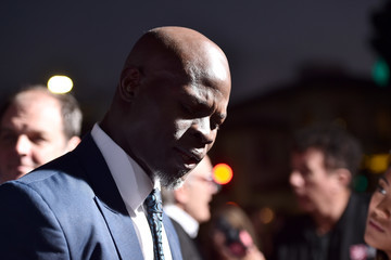Djimon Hounsou Premiere Of 'Same Kind Of Different As Me' - Red Carpet