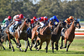 Dom Tourneur Bendigo Races