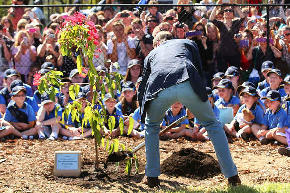 Prince William, Duke of Cambridge places soil on a West Australian Summer Red at the Winmalee Guide Hall on April 17, 2014 in Winmalee, Australia. The Duke and Duchess of Cambridge are on a three-week tour of Australia and New Zealand, the first official trip overseas with their son, Prince George of Cambridge.