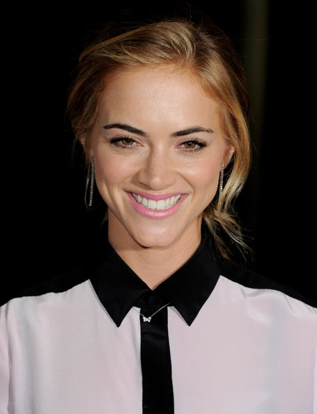 Emily wickersham actress emily wickersham arrives at the premiere of