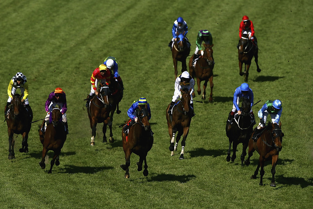 stakes day - photo #23