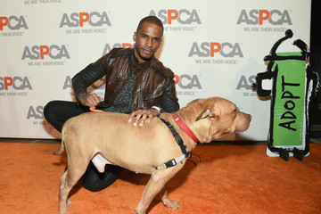 Eric West ASPCA Young Friends Benefit