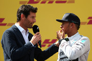 Lewis Hamilton Mark Webber Photos Photo