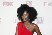 Xosha Roquemore Photos Photo