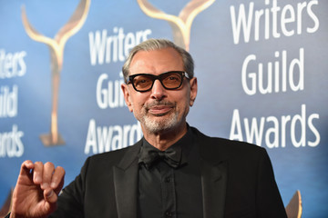 Jeff Goldblum 2017 Writers Guild Awards L.A. Ceremony - Arrivals