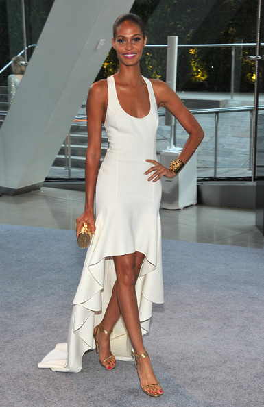 Joan Smalls - 2012 CFDA Fashion Awards - Cocktails