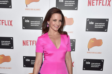 Kristin Davis 2015 IDA Documentary Awards - Arrivals