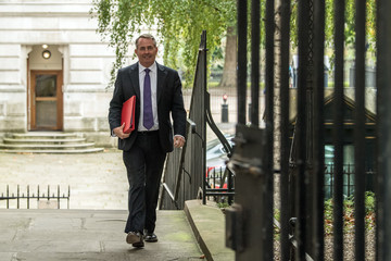 Liam Fox Theresa May Meets Business Leaders at Downing Street