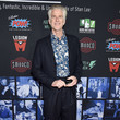 Matthew Modine 'Excelsior! A Celebration Of The Amazing, Fantastic, Incredible And Uncanny Life Of Stan Lee' - Arrivals