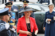 Princess Michael of Kent attends as members of the Royal Family attend events to mark the centenary of the RAF on July 10, 2018 in London, England.