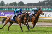 Bizzwinkle ridden by Sam Spratt wins ahed of .Duplicity ridden by Rosie Myers in Race 9  Christchurch Casino 155th New Zealand Cup during New Zealand Cup and 1000 Guineas Day at Riccarton Park Racecourse on November 17, 2018 in Christchurch, New Zealand.