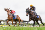 Smiling Assassin ridden by Lisa Allpress leads ahead of  Oligarch ridden by Chris Johnson in Race 3 Cashmere Estate - Live Without Compromise Premier during New Zealand Cup and 1000 Guineas Day at Riccarton Park Racecourse on November 17, 2018 in Christchurch, New Zealand.
